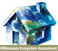 Millennium Ecosystem Assessment logo