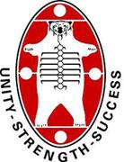 NAN logo