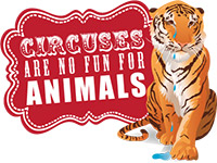 Photo of circuses are no fun logo