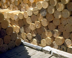 lumber