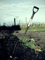 fork in soil