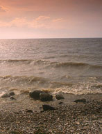Lake winnipeg shore