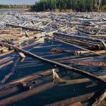 Manitoba Dam Debris by Garth Lenz