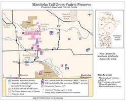 Manitoba Tall Prairie Grass Preserve
