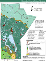 Manitoba Wildlands Manitoba Forest Regions Map